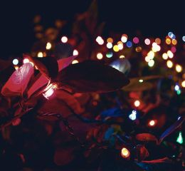 lights bokeh christmas night nikon