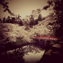nature photography travel japan