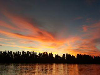 sun nature photography argentina