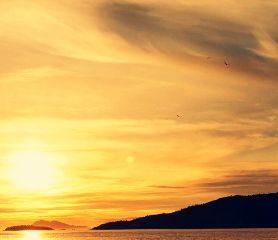 colorful nature beach sun sunset photography