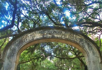 savannah wormsloe south plantation georgia oaks