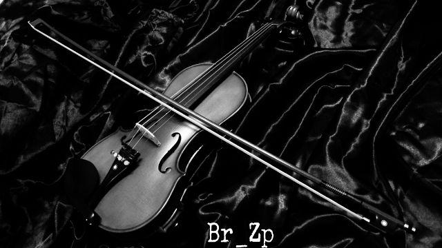 violin picture gallery