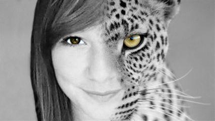photography nature color splash people pets & animals wapmulticolorsplash