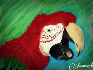 dcpets pets & animals vintage birds