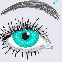 1000 Awesome Drawsomething Images On Picsart