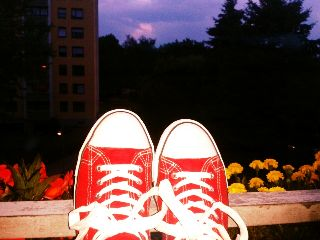 shoes holiday